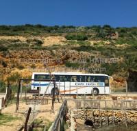 bus tourisme tunisie
