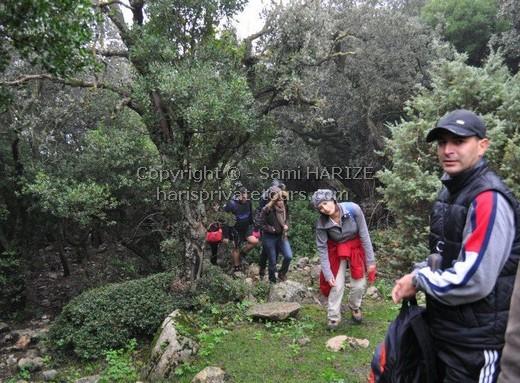 Sport tunisie expédition