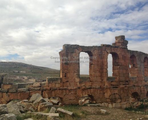 Site romain althiburos