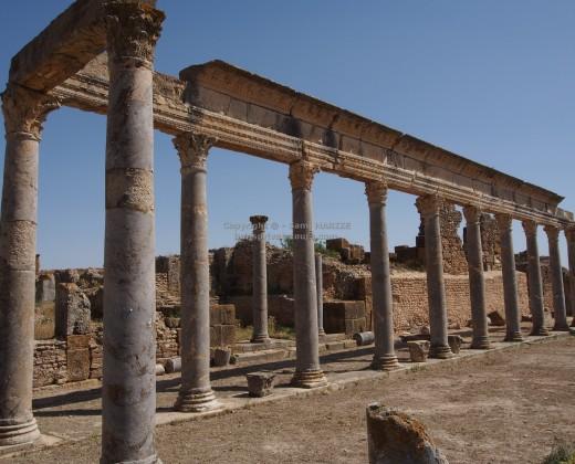 colonnes romaines thuburbo majus