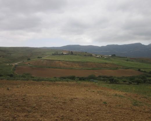Paysages Tunisie Profonde